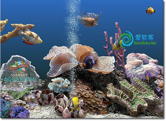 3D水族馆屏保:Marine Aquarium 3.2 下载+注册码 | 爱软客